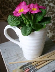 A Primrose placed in a pitcher makes a great housewarming gift.