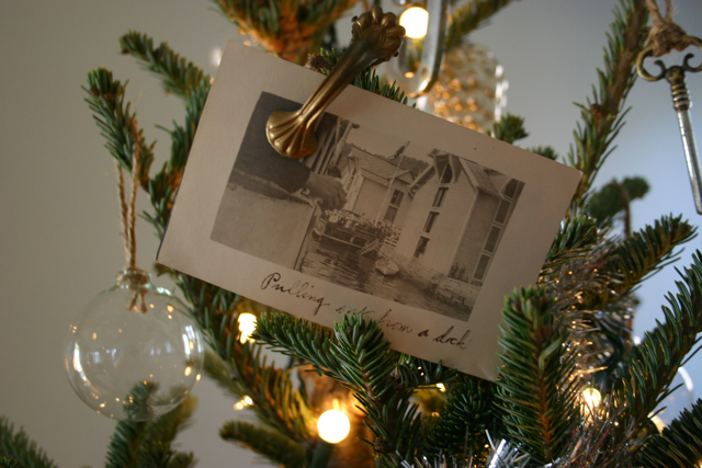 Old photographs, purchased at an estate sale years ago, are clipped to the tree with antique german curtain clips.