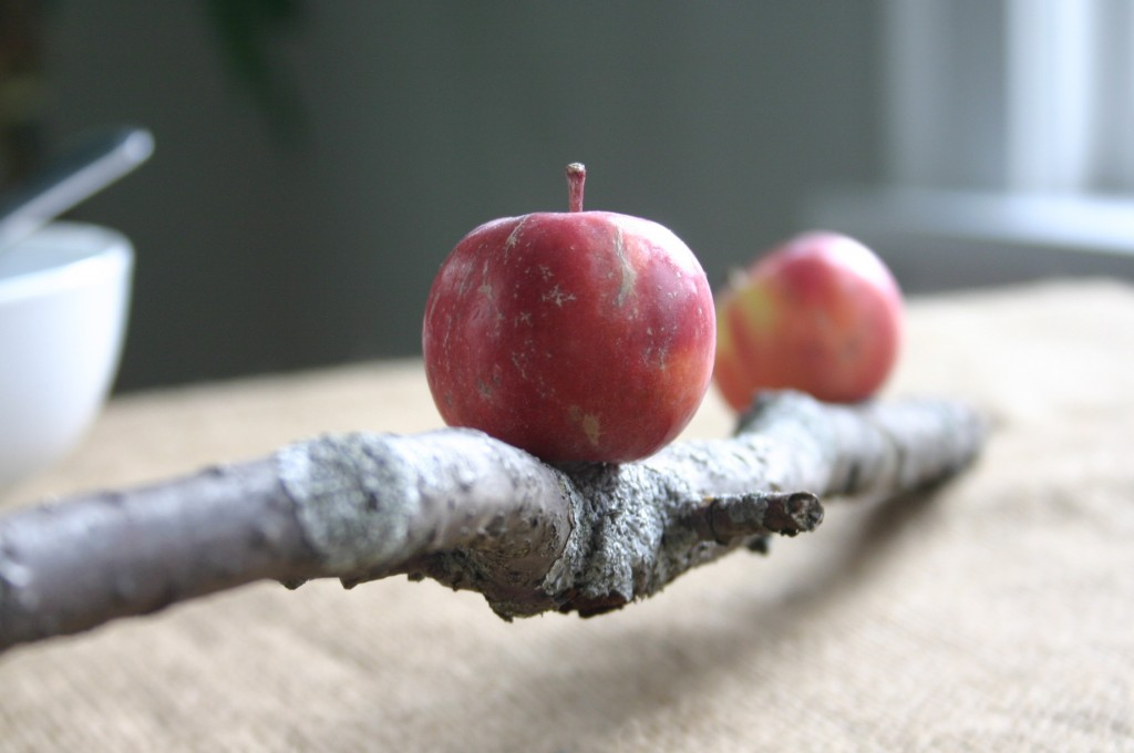 This took me about 5 minutes to make - simply apply apples to branch with hot glue.