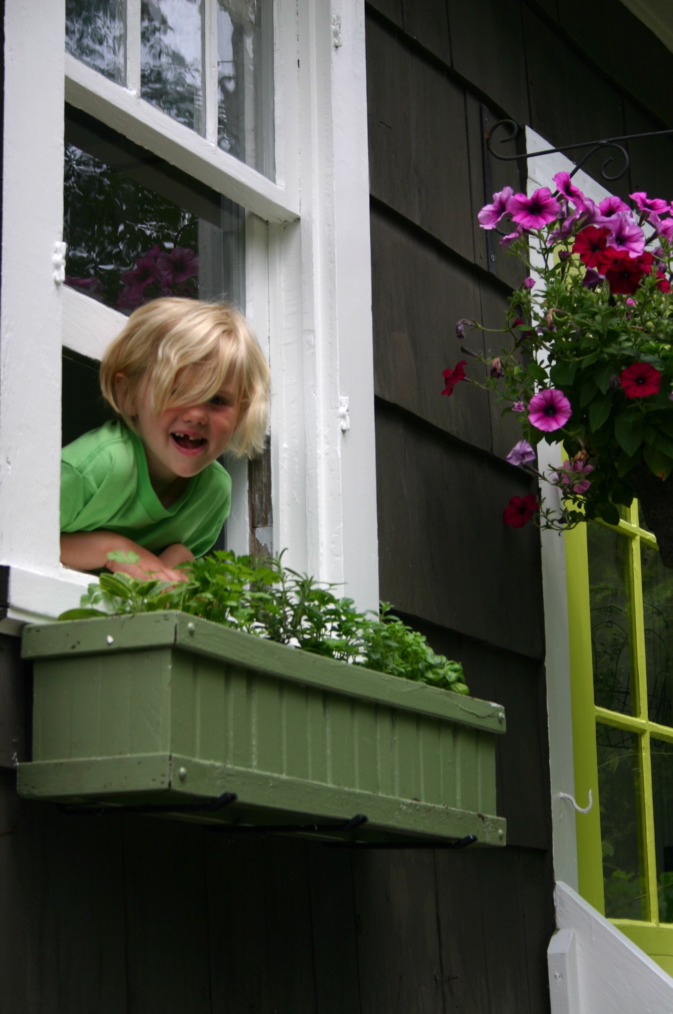 You Ll Need A Sunny Window Pack In As Many Plants Can And Your Box Will Be Overflowing With An Abundance Of Flavorful Herbs
