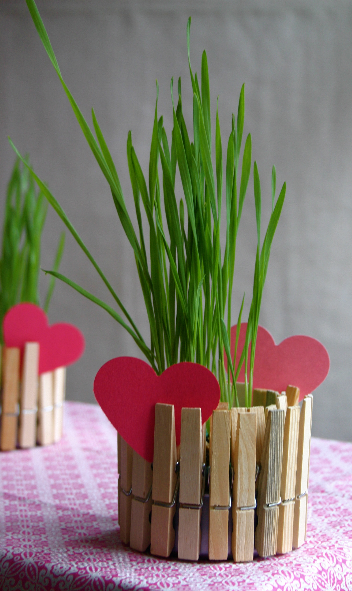 Children love crafts that are simple, turn out well and can serve as a suitable gift for Mom - this craft is all of that.